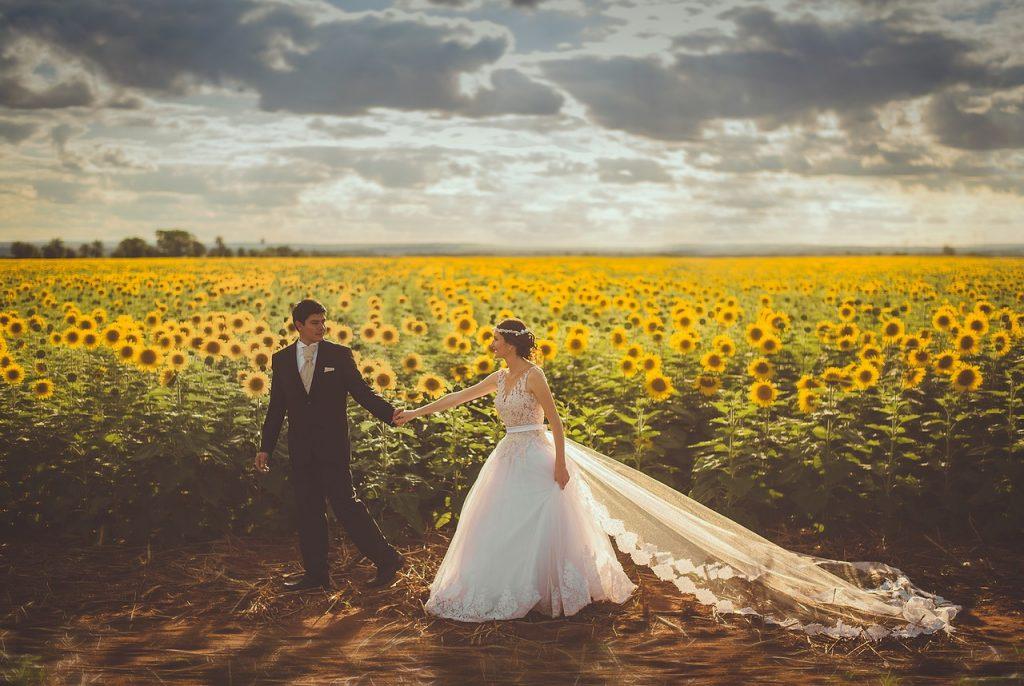 זוג חתן וכלה בשדה חמניות